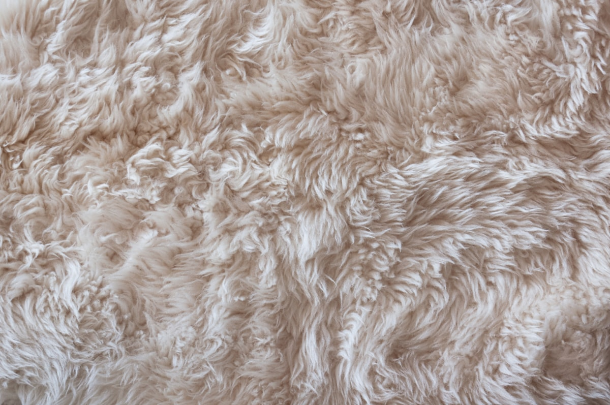 How to Keep Your Sheepskin Rug Clean this Christmas